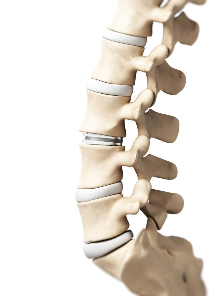La colonna vertebrale durante il sonno